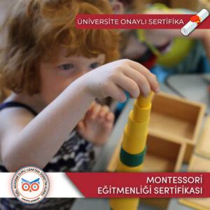 Akademi DuruOnline Montessori Eğitmenliği Sertifikası